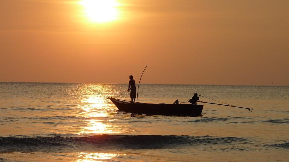 Fiskerbåde-fiskeri