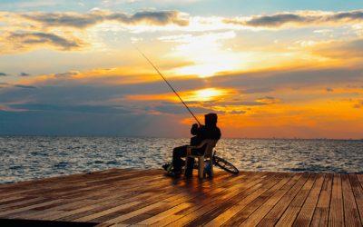 Pas på katten, når du tager på en længerevarende fisketur
